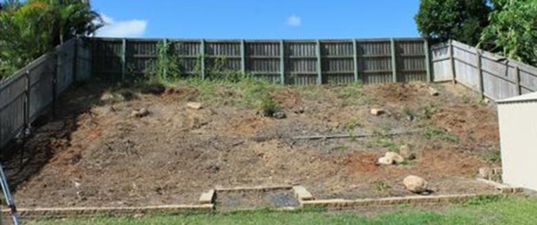 Garten Vorher 1